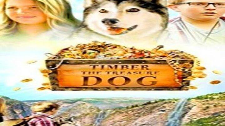 Тимбер – говорящая собака 2016 семейный