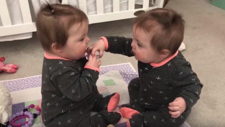 Смешные близнецы делят соску...)