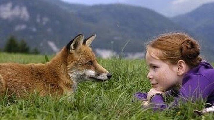 Девочка и лисенок. Драма приключения семейный