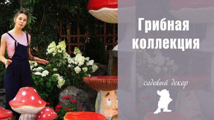 Грибная коллекция 🍄 Садовые гномы 🍄 МАФ