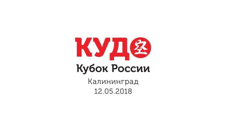 КУДО. Кубок России.