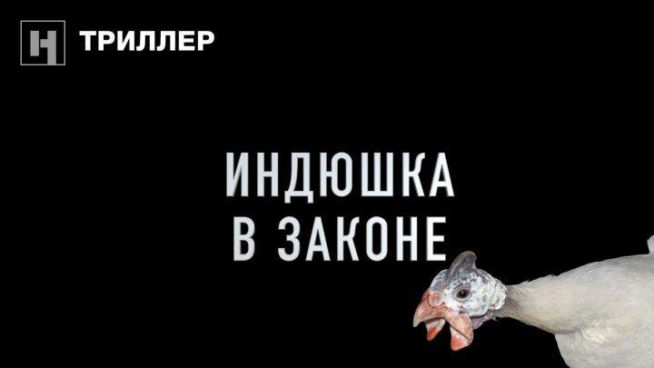 «Индюшка в законе» / «Чёрная» комедия от «Новой»