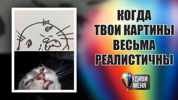 Лучшие рисунки котов