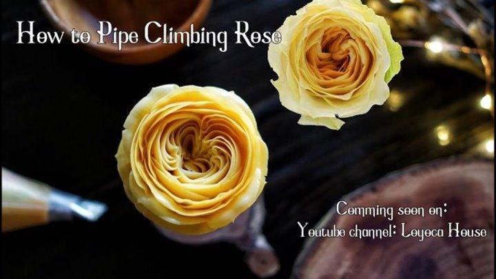 Цветок Роза. Кондитерская насадка № 104