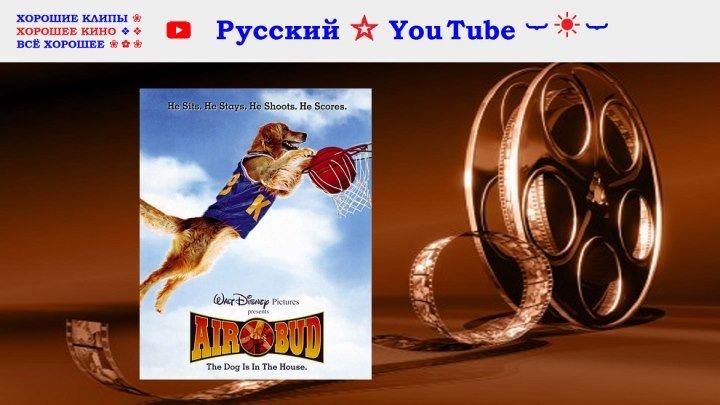 Король воздуха ⋆ Air Bud ⋆ США Канада 1997 ⋆ Русский ☆ YouTube ︸☀︸