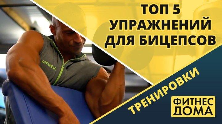 5 эффективных упражнений для бицепсов