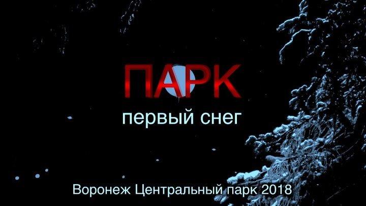 Воронеж. Центральный парк. Динамо. Декабрь. 2018.