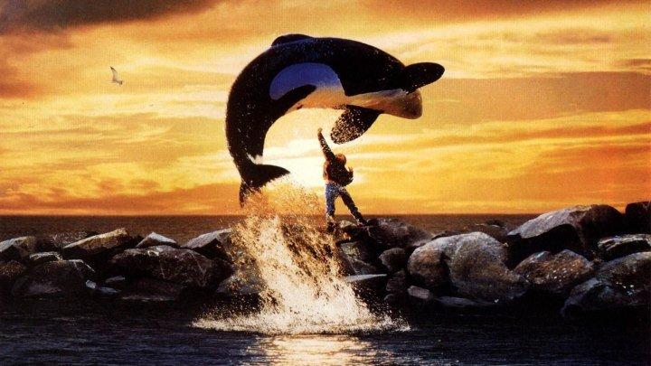 Освободите Вилли 1993 Семейный фильм, приключения