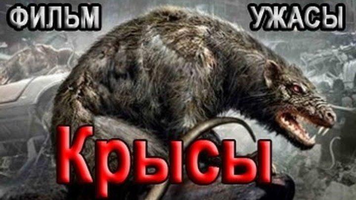 Фильм ужасов Крысы