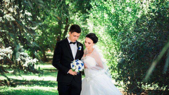 Свадебный ролик Евгения и Нины 18.08.2018