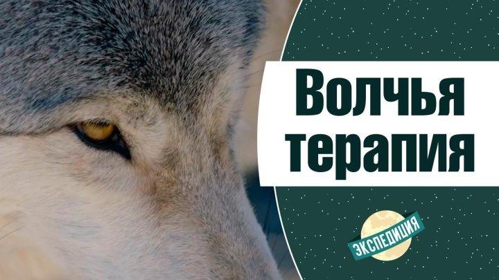 Волчья терапия