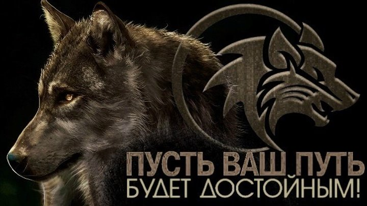 Одинокий волк - Берегите близких, тяжело терять тех, кого любишь.