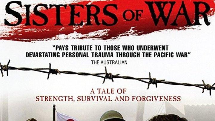 Сёстры войны (2010)