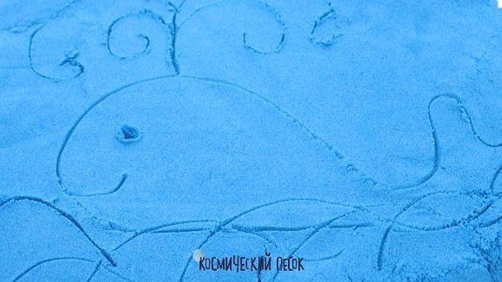 День китов и дельфинов.mp4