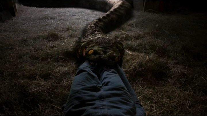 Анаконда 2 Охота за проклятой орхидеей Anacondas The Hunt for the Blood Orchid (