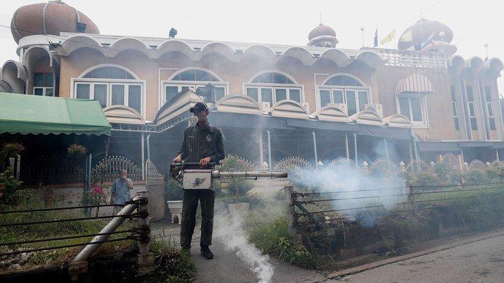 Лихорадка Денге свирепствует в Таиланде: почти 70 человек умерли, 60 тысяч заражены