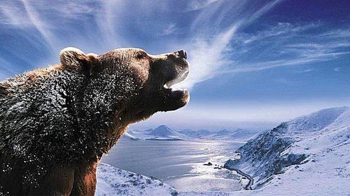 Россия - царство тигров, медведей и вулканов (2011)