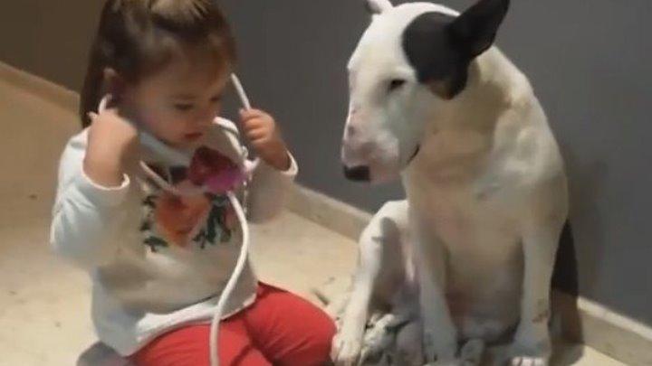 Девочка - ветеринар и ТЕРПЕЛИВАЯ собака..))