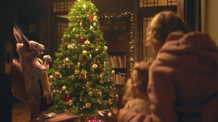 Белки снова на Первом — встречайте Новый год с нами! Подарки