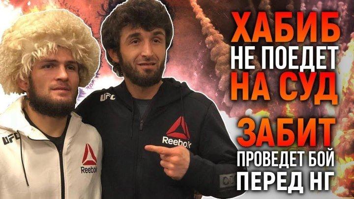Хабиб Нурмагомедов не поедет на суд, Забит проведёт бой перед НГ КроКоп дебютиру