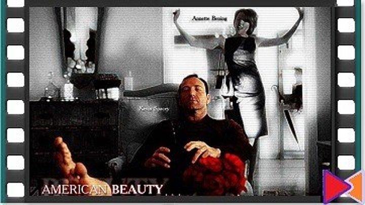 Красота по-американски [American Beauty] (1999)