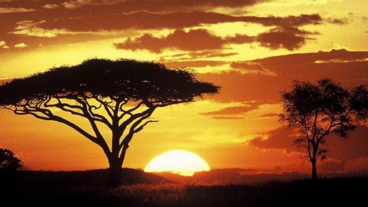 ТАНЗАНИЯ - страна Центральной Африки