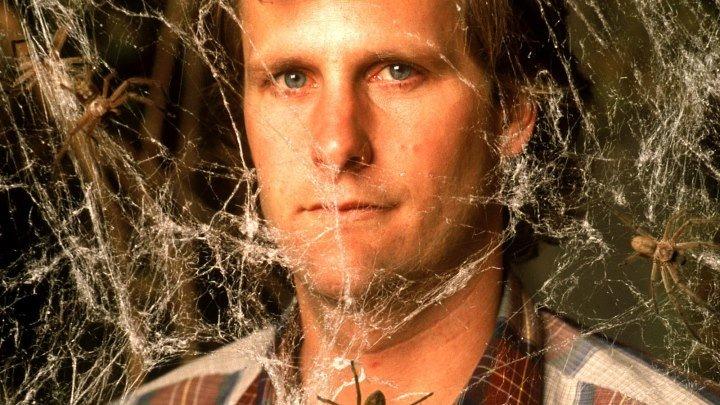 Боязнь пауков (1990) Ужасы, фэнтези, комедия