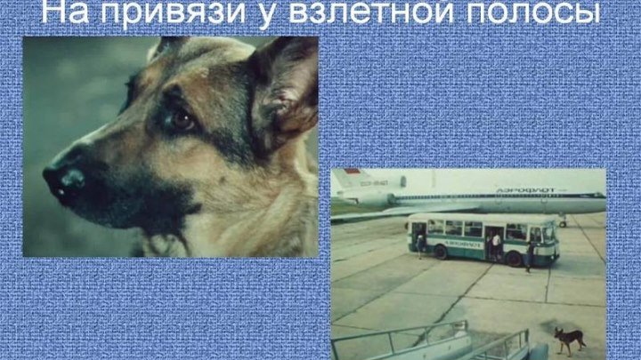 На привязи у взлётной полосы (Владимир Хмельницкий) [1989, драма]