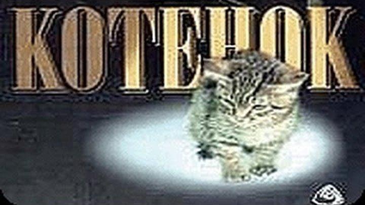 Котенок (1996) Лучшие семейные фильмы _ Фильмы про животных