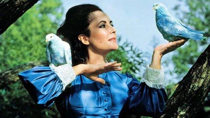 К дню детского ТВ в России красивая Фильм-сказка Синяя птица (1976)