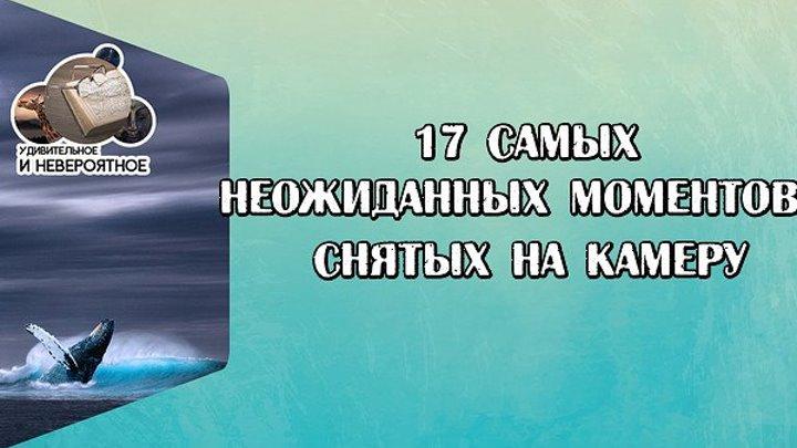 17 САМЫХ НЕОЖИДАННЫХ МОМЕНТОВ, СНЯТЫХ НА КАМЕРУ (1)