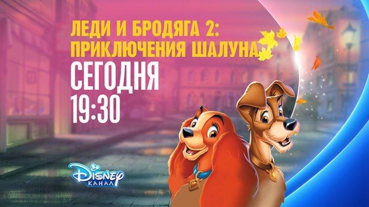 """Леди и бродяга 2: Приключения Шалуна"" на Канале Disney!"