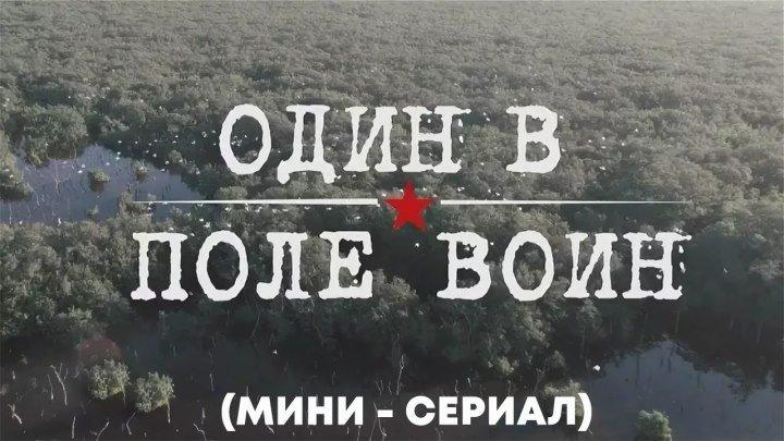 """Один в поле воин """"мини-сериал"""" (2018) 720HD"""