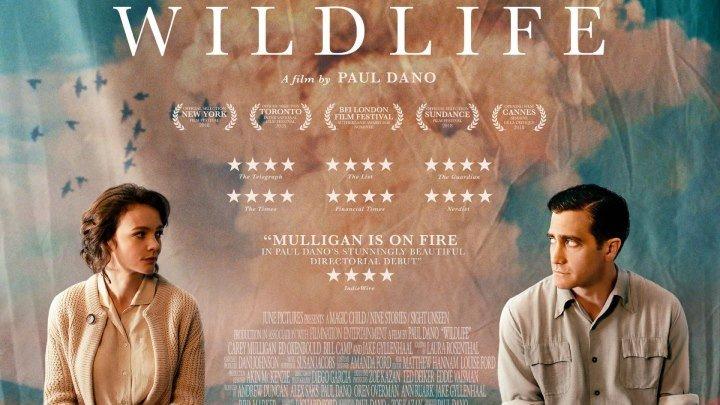Дикая жизнь / Wildlife (2018) - драма