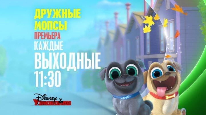 """""""Дружные мопсы"""" на Канале Disney!"""