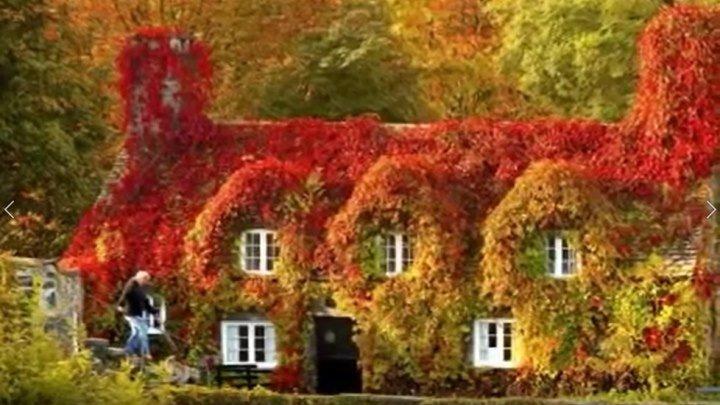 Золотая осень! Очень красивые фото и музыка