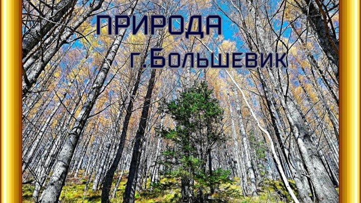 ПРИРОДА горы Большевик