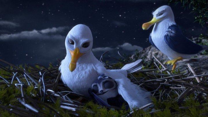 Смотреть онлайн Птичий дозор в HD на сайте 78HD.RU