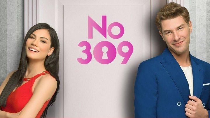 ნომერი 309 - სერია 1x1