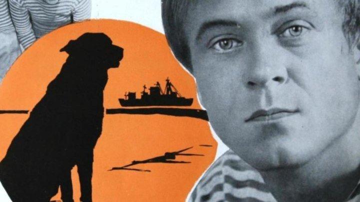 Солёный пёс - 1973