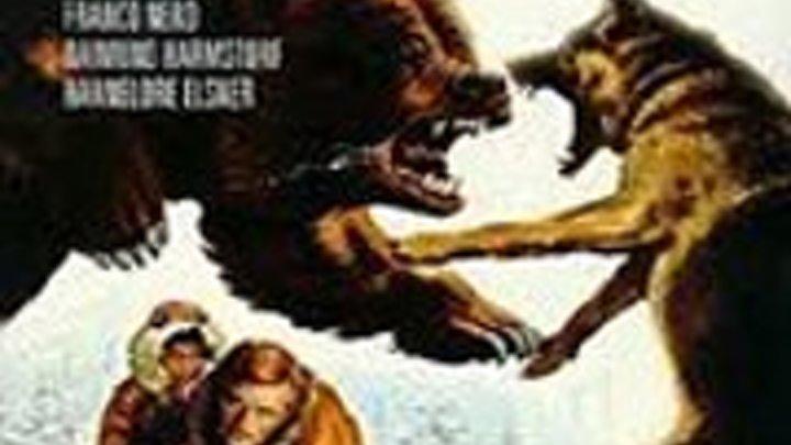 Возвращение Белого Клыка 1974