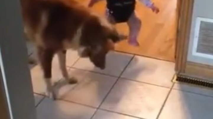 Супер няня учит малыша прыгать!
