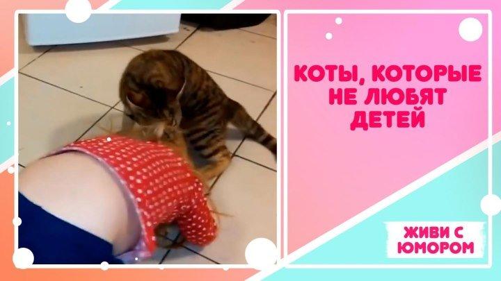Коты, нелюбящие детей