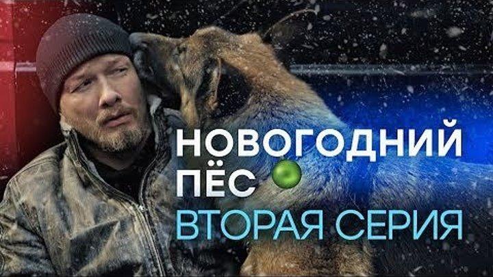 Новогодний Пёс.2 серия из 2. 2018.(детектив+комедия)