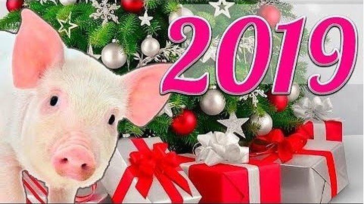 Красивое Поздравление с НОВЫМ 2019 ГОДОМ для друзей и близких!