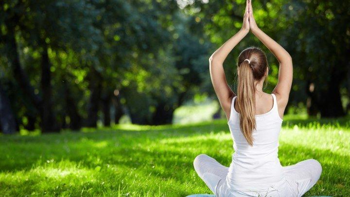 Куряне отметили Международный день йоги
