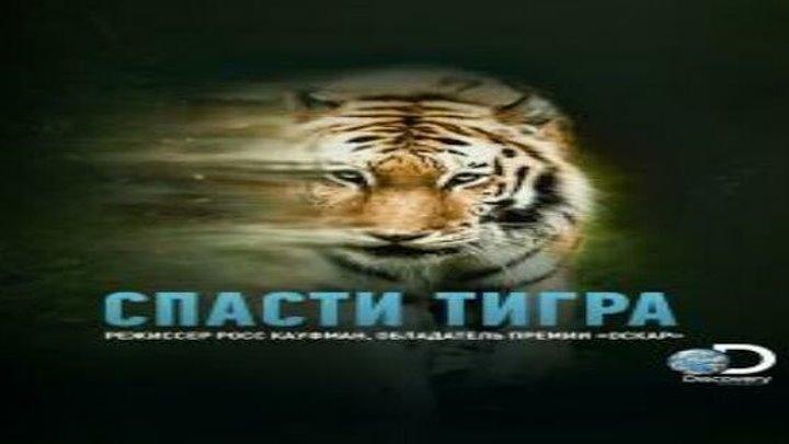 Спасти тигра смотреть онлайн, Документальные 2019
