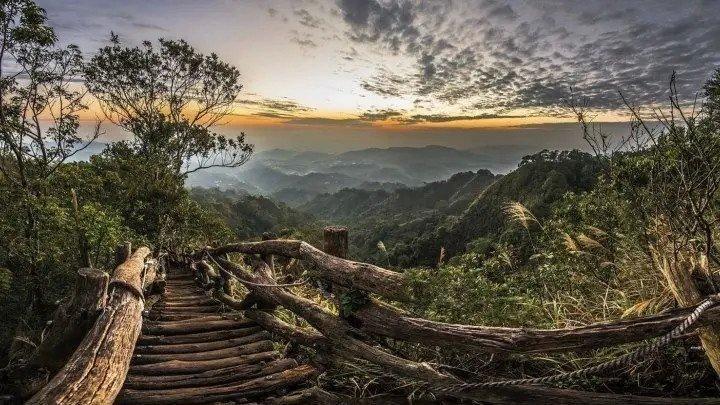 Дикая природа Тайваня: остров джунглей - Документальный