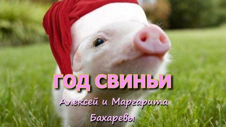 ГОД СВИНЬИ караоке Алексей и Маргарита Бахаревы