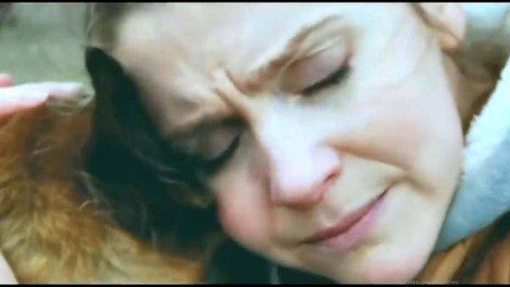 Смотрим и плачем - До слёз трогательно смотреть до конца 😻Муз Кафе Мурка😻🎤♪ ♫ ♬